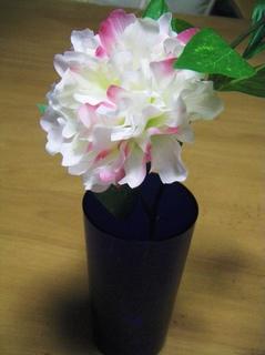 花の水.jpg