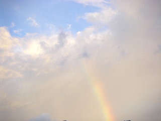 虹 はしご.JPG